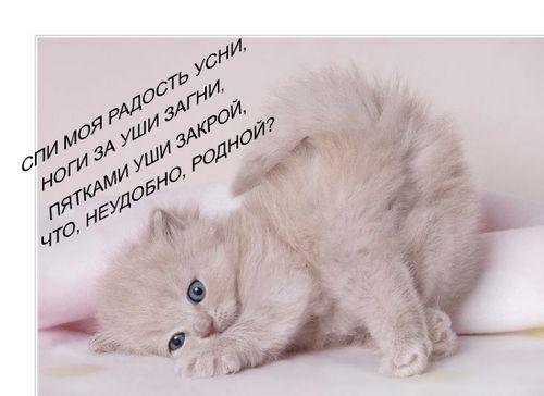 http://img0.liveinternet.ru/images/attach/b/0/10526/10526256_6615215_6210370_cgb.jpg