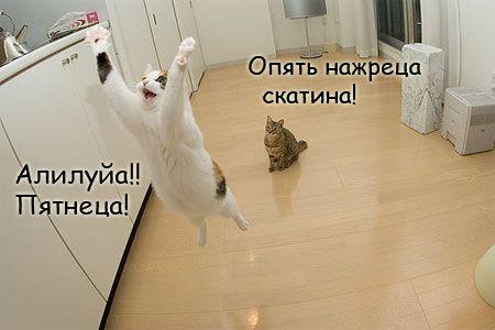 15726397_pyatnica.jpg