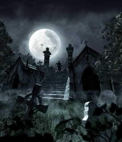 Рубрики кладбище лес ночь тьма