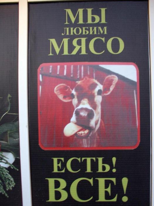 http://img0.liveinternet.ru/images/attach/b/0/20/128/20128681_CIMG0084.JPG