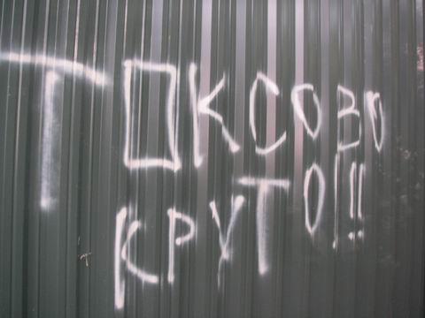 http://img0.liveinternet.ru/images/attach/b/0/23048/23048900_toksovo_zabor_leto_2006.JPG