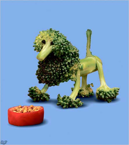 sculptures made of vegetables from the garden or toys