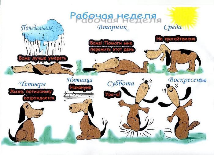 http://img0.liveinternet.ru/images/attach/b/1/11304/11304408_1783462.jpg