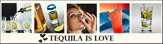 15171839_3721722__tequila (542x147, 68Kb)