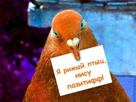http://img0.liveinternet.ru/images/attach/b/1/17620/17620652_15087745_23227719_85cb53201e7b.jpg