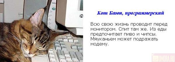 (600x214, 48Kb)