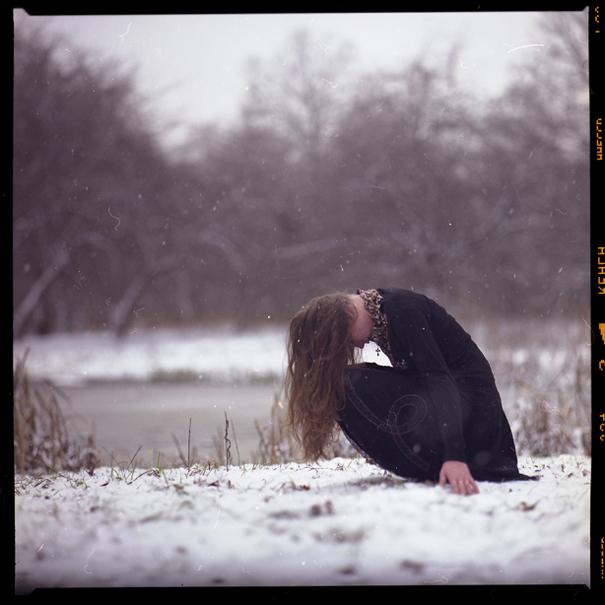 снится белая птица - Раздел жанр - Фотографии на Фото.Сайте - Photosight...