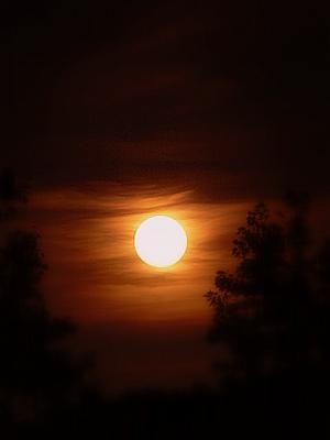 Ночь голубой луны
