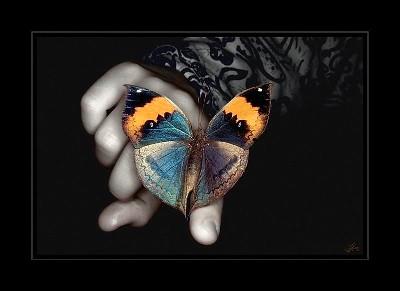 Картинки за любов, цветя и всяко нежно чуство 3270279_16654952_salamandra_top