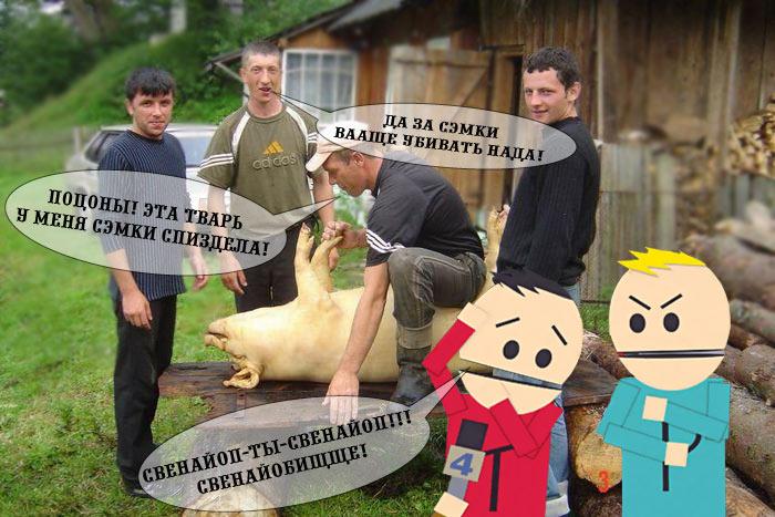 http://img0.liveinternet.ru/images/attach/b/1/3606/3606079_21365398_svinoyopWEB.jpg