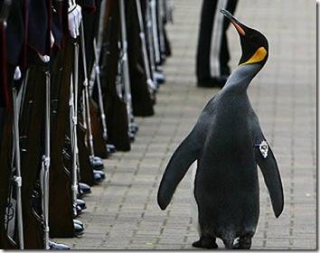 пингвин-рыцарь, символо полиции норвегии