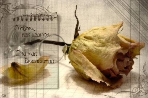 http://img0.liveinternet.ru/images/attach/b/2/0/74/74228_70380c7b47a4.jpg