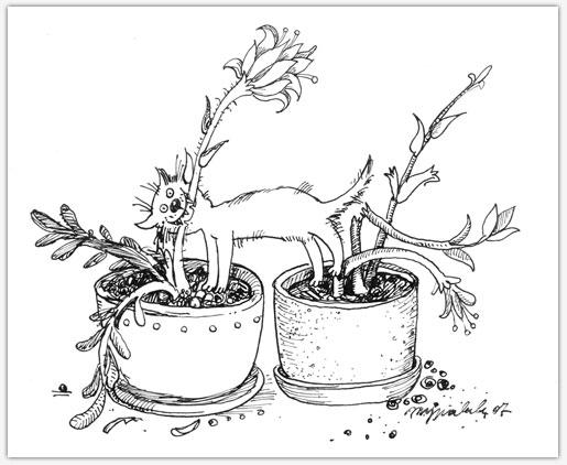 06 - один цветок затоптать, второй – сгрызть (515x422, 44Kb)
