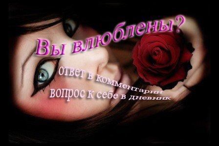 15943822_15422084_15305018_vuy_vuylyublennuy (448x299, 23Kb)