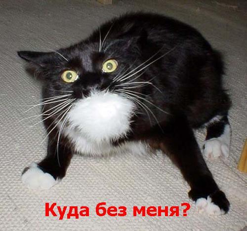 pyatnica_008 (500x468, 38Kb)