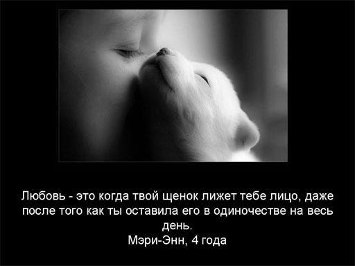 opros_008 (512x384, 19Kb)
