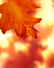 Autumn (176x220, 56Kb)