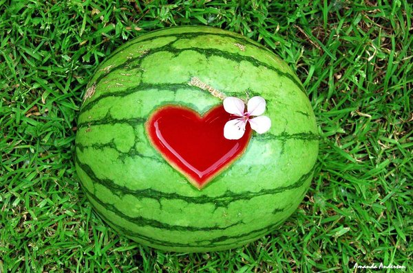22243842_20933939_Watermelon_by_Yourmumsafag (600x398, 94Kb)