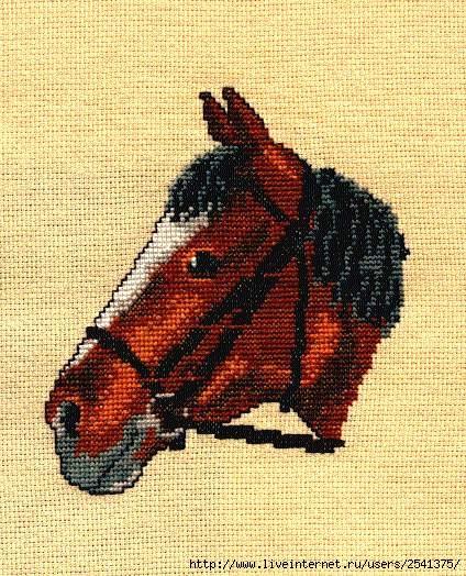 Часть 4 - Голова лошади