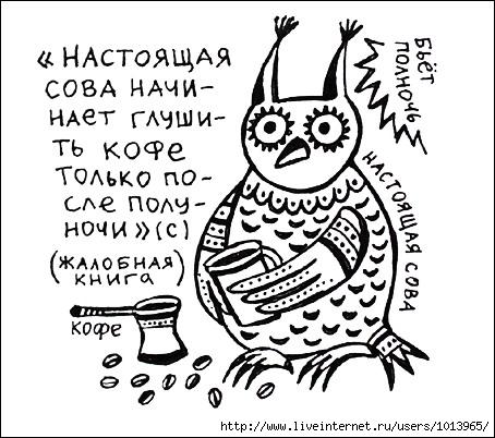 http://img0.liveinternet.ru/images/attach/b/2/24/262/24262144_nastoyaschaya_sova.JPG