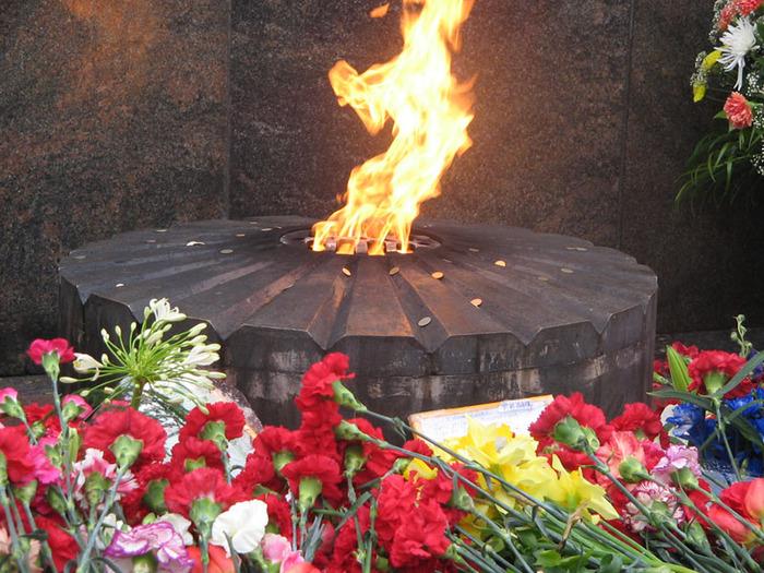 Ветеранов заставят топать по Майдану