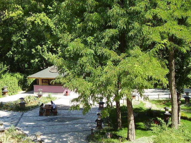 Японский сад в ташкенте фото