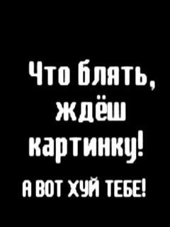 (240x320, 12Kb)