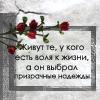 http://img0.liveinternet.ru/images/attach/b/3//41/391/41391092_5.jpg