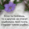 http://img0.liveinternet.ru/images/attach/b/3//41/392/41392305_27.jpg