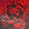 http://img0.liveinternet.ru/images/attach/b/3//41/433/41433376_1237798385_8.png