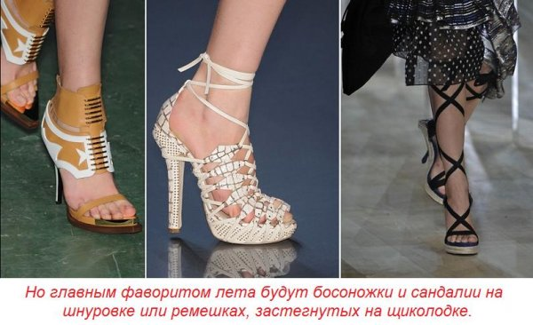 www.bravedefender.ru