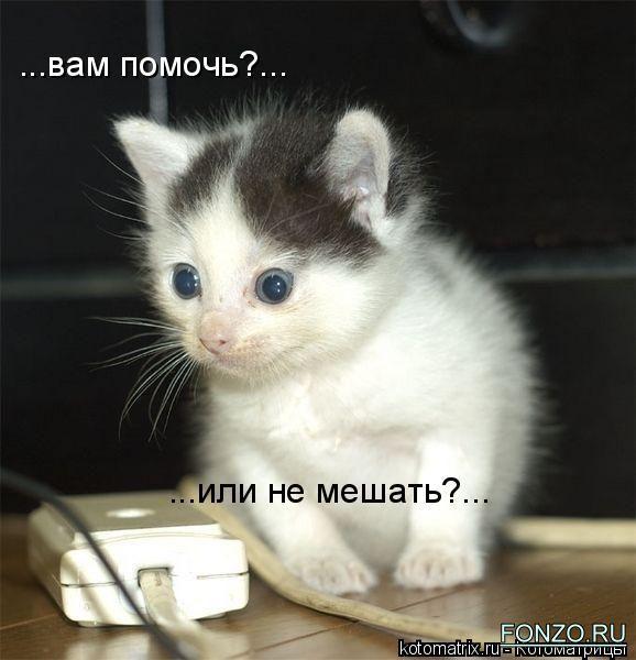 1_kotomatrix_22 (578x600, 43Kb)