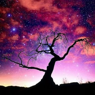cosmos (320x320, 32Kb)