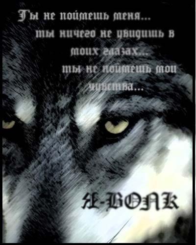 Стихи и песни про волков в картинках 10676436_13