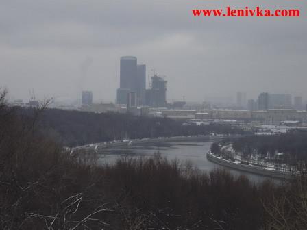 Воробьевы Горы: вид на излучину Москва-реки