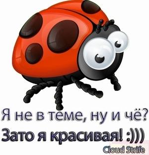 6564201_2808082_YA_krasivaya (300x312, 31Kb)
