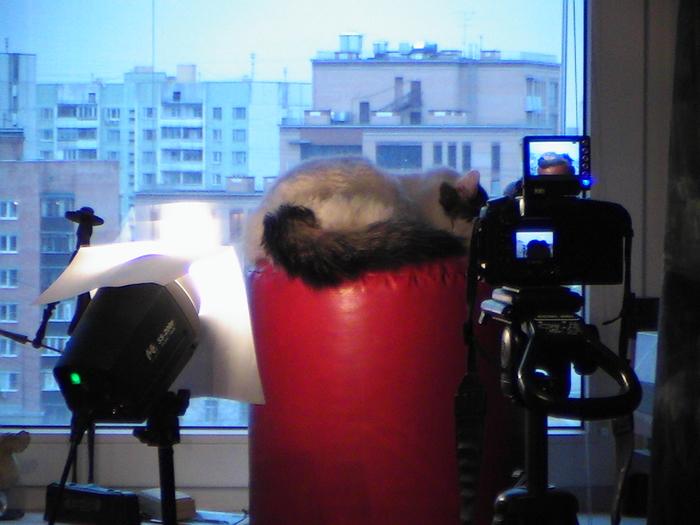Поскольку основные фотоаппараты заняты, снимал видеокамерой в режиме фото. Отсюда шумы и цвета.