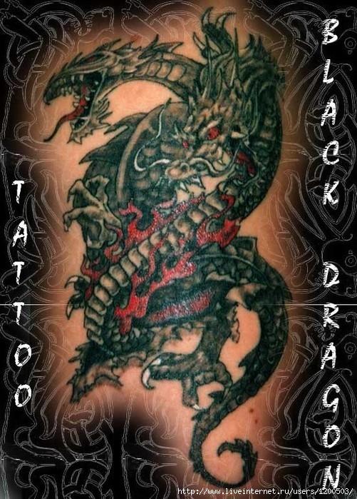tatoo_r (501x699, 135Kb)
