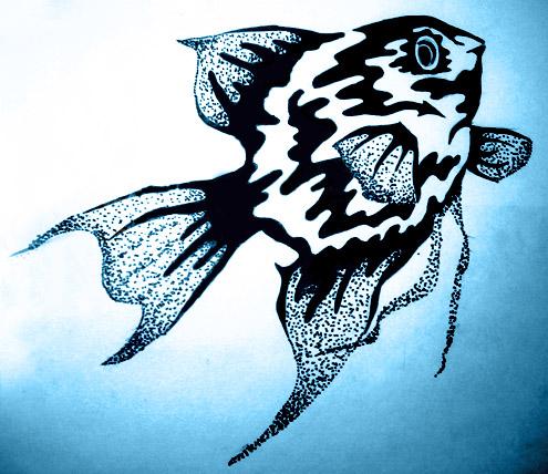 """Предпросмотр - Схема вышивки  """"Рыбка """" - Схемы автора  """"chekmenucha..."""