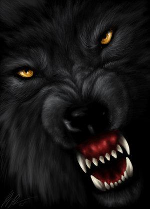 14455727_Wolf__s_Reprisal_by_jocarra (300x417, 18Kb)
