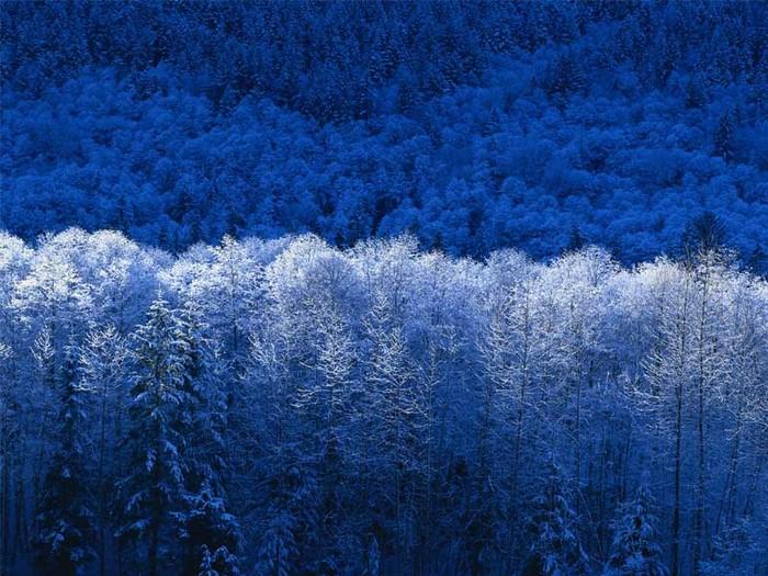 Зима (700x525, 142Kb)