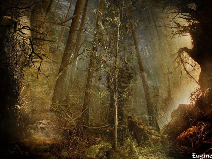 09 апреля 2011, 20:16, автор - хозяйка блога.  Н.Разгон.  Загадочный лес.  Татьяна Владимировна Хворостенко. на...