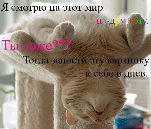 22034536_20623583_ef1b66c3009c (500x425, 59Kb)
