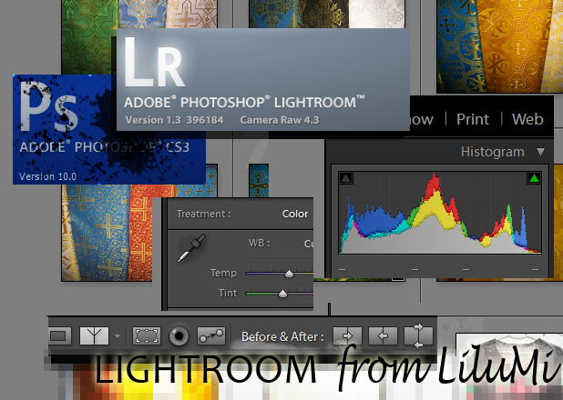 Adobe Photoshop vs Adobe Lightroom