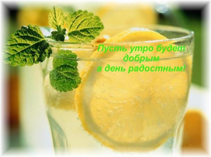 блог диетолога анны билоус