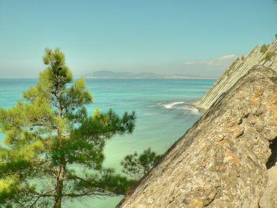 Природа пляжи дельфины красивые фото