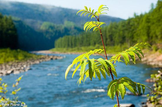 Картинки с изображением природы якутии