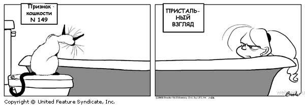 (600x210, 24Kb)