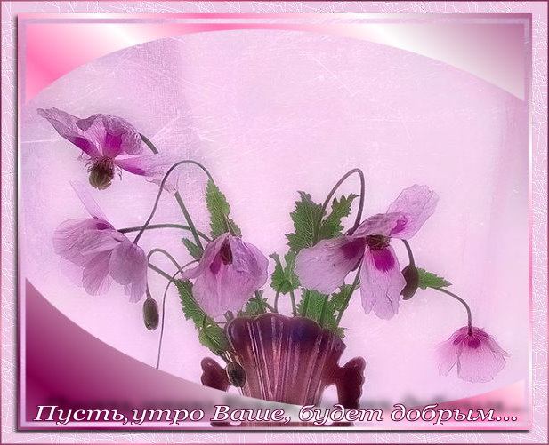 http://img0.liveinternet.ru/images/attach/b/3/28/133/28133269_15581867_03_05_07.jpg