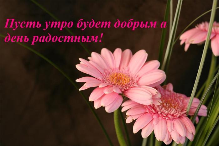 http://img0.liveinternet.ru/images/attach/b/3/28/17/28017612_pust_utro_budet_dobruym.JPG